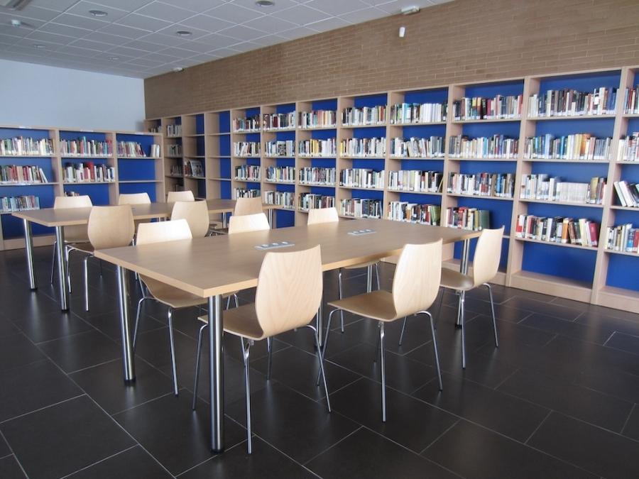 colegios de Olivares y biblioteca