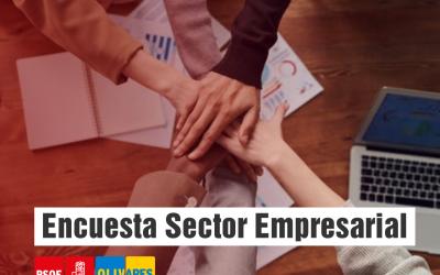 Encuesta sobre el sector empresarial de Olivares